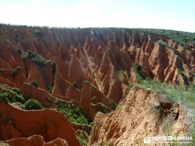 Carcavas de Alpedrete de la Sierra y Meandros del Lozoya;rutas senderismo madrid:excursiones y sende